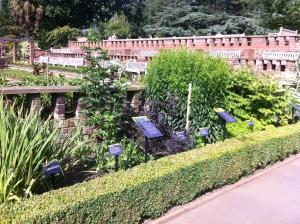 Hornimal medicine garden