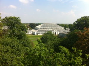 Temperate House (from Treetop walkway)